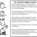 Planting Directions